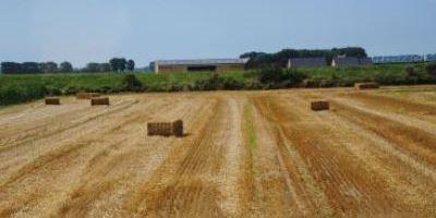 Земельну ділянку вартістю понад 17 млн грн повернуто державі – Головне  управління Держгеокадастру у Тернопільській області